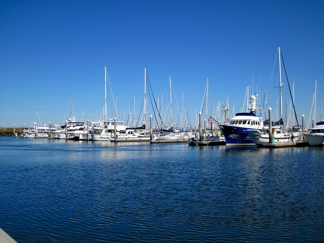 An open Shilshole Marina fairway at the annual open house.