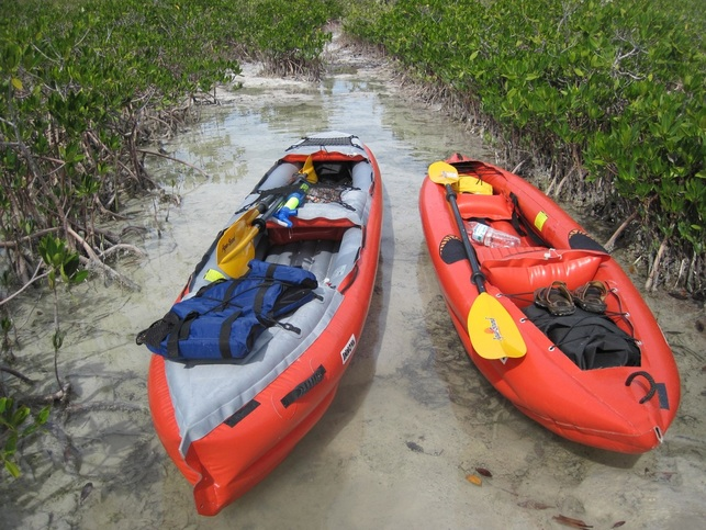 Our Innova Helios 2 and Safari ready to launch in the mangroves near Key West