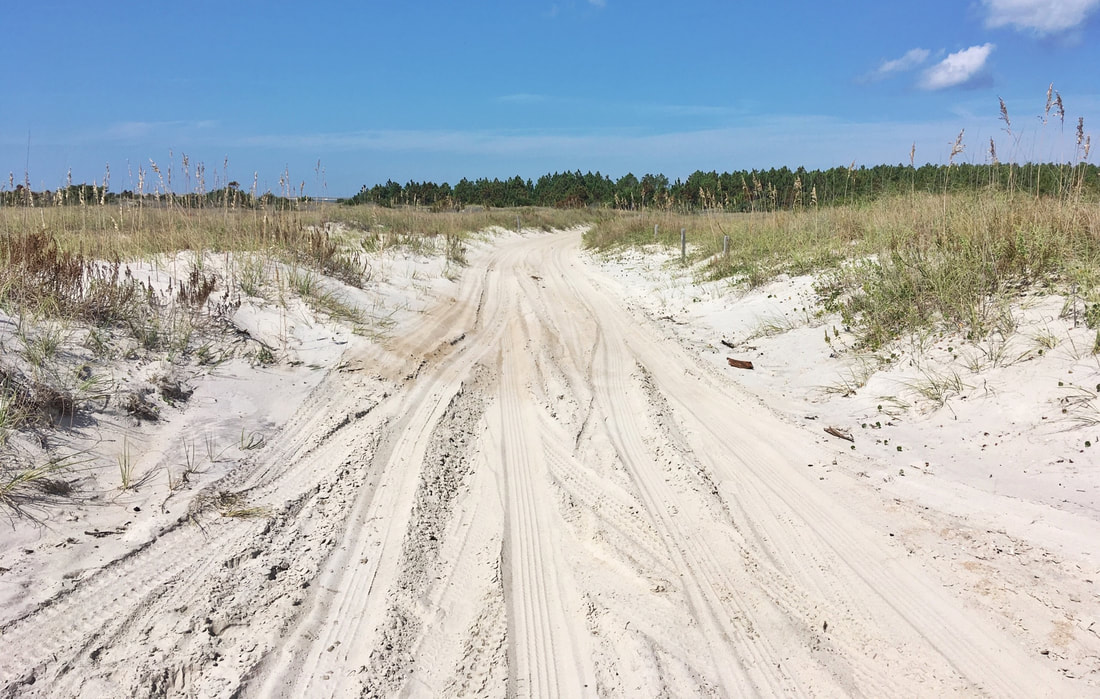 The back service road at Cape Lookout, NC