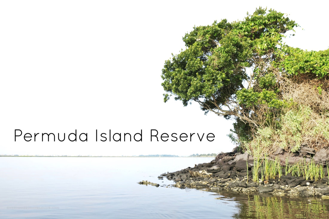 Kayaking to the Permuda Island Reserve in 2018!