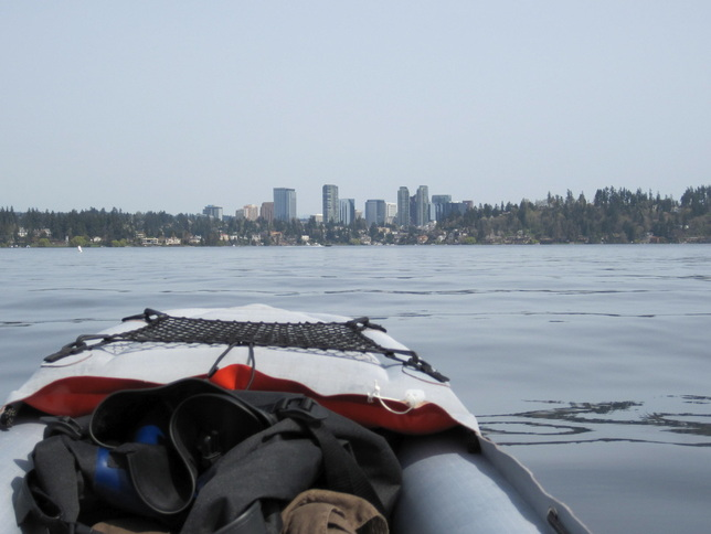 A view of downtown Bellevue from Lake Washington