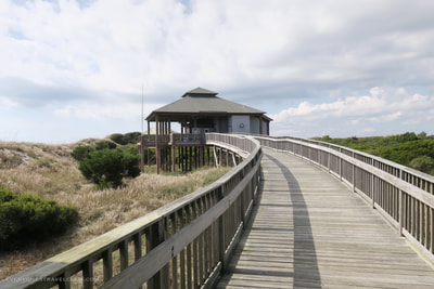 View of the boardwalk leading to the seasonal snack shack on Bear Island.