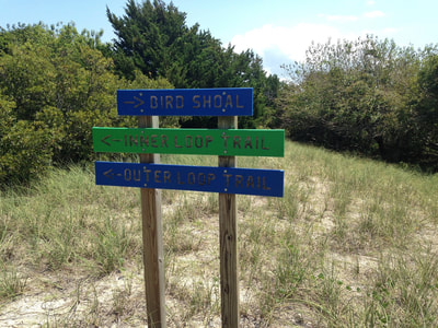 Trail markers on Town Marsh, Beaufort, North Carolina
