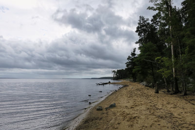 A view from Flanners Beach at the Neuse River recreation area.