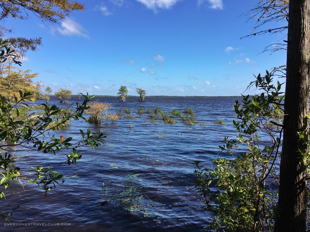 Croatan National Forest's Great Lake