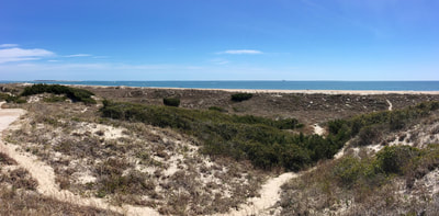 A beach panorama from the top of a high dune on the Elliott Coues Nature Trail in North Carolina.