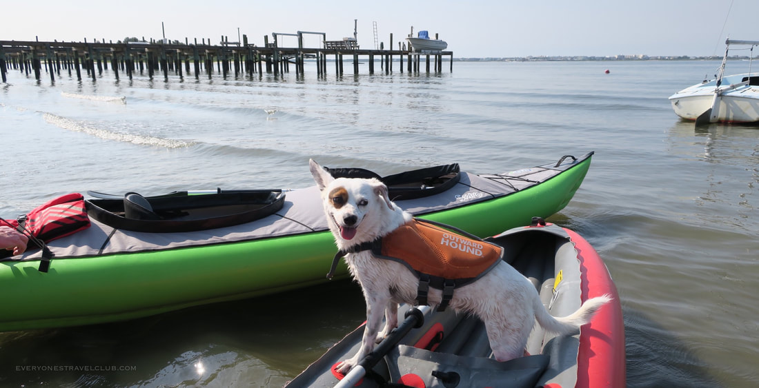 A dog aboard an inflatable kayak at the 11th street water access in Morehead City, NC.