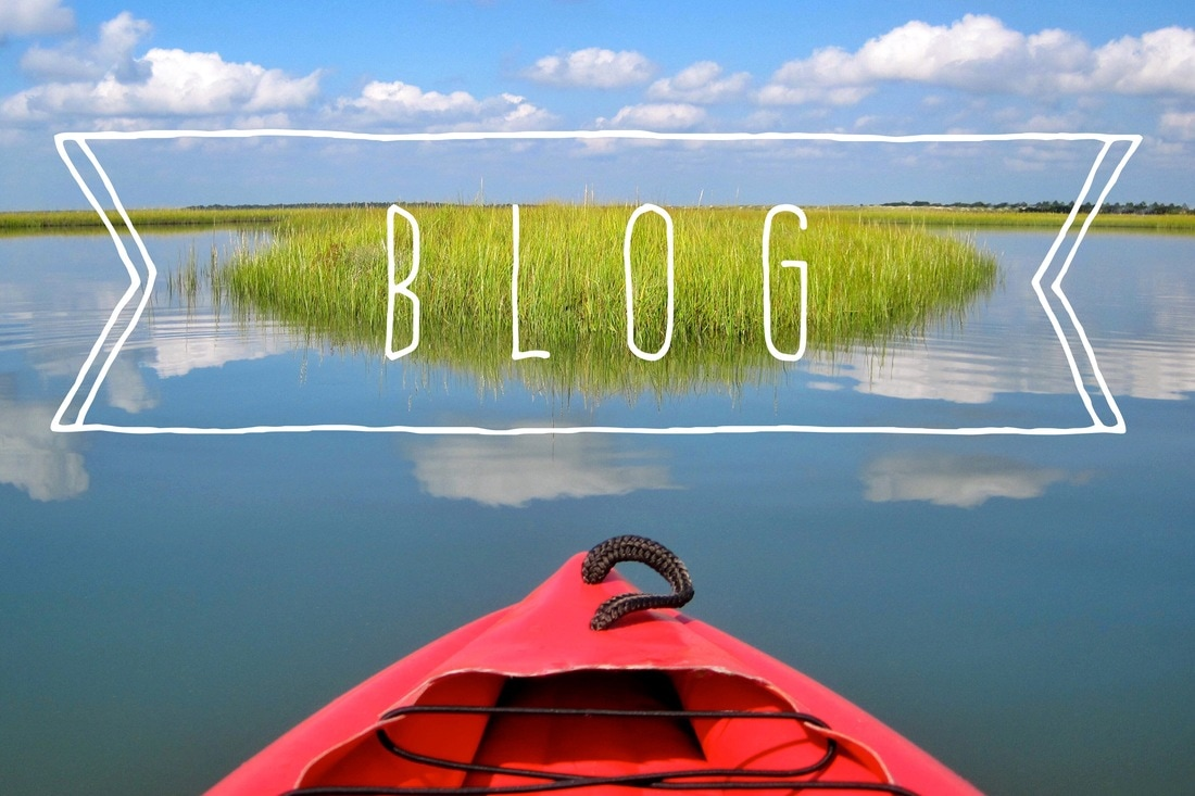 The Everyone's Travel Club blog shares kayaking, sailing, hiking, and traveling stories from aquatic locales
